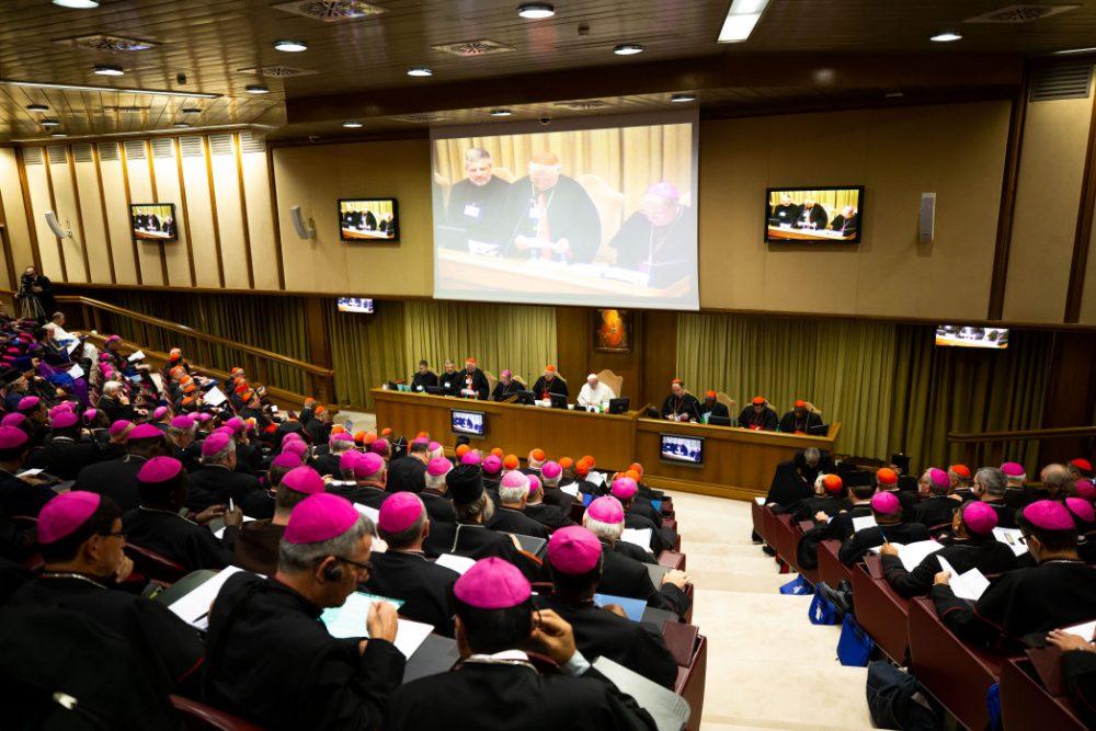 Sínodo de obispos/ Fuente: CNA - Daniel Ibáñez